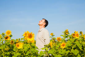 Man in sun flower field using the warmth of the sun as a relaxation technique