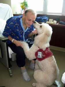 Blood pressure patient enjoying animal assisted therapy