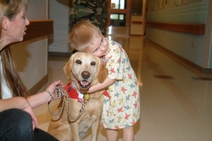 Little boy enjoying animal assisted therapy