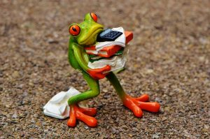 Frog with too much to do.