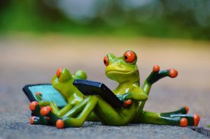 Frogs sharing the work load