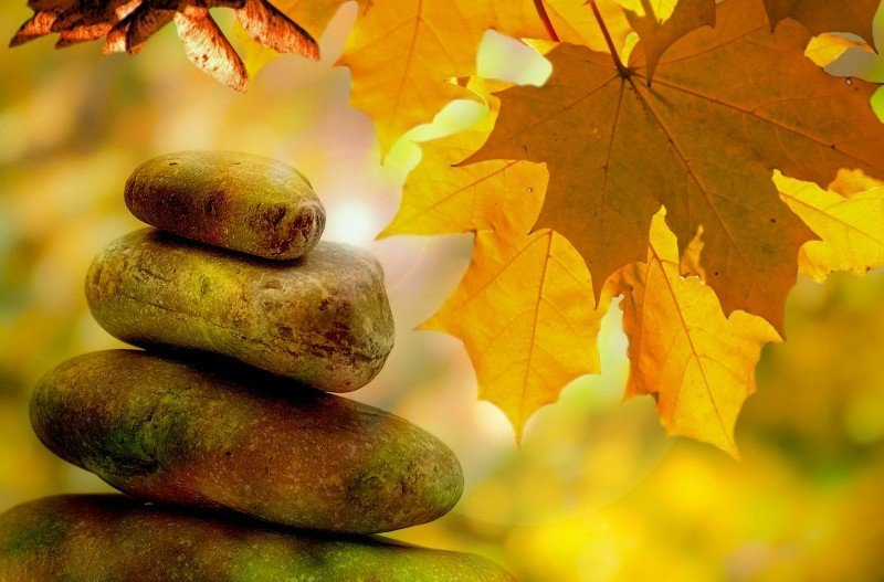 meditation-balance-rest-autumn-tree-trees-leaves